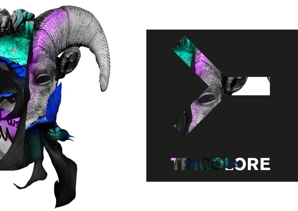 Tricolore Artwork